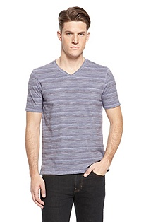 'Canistro' | Regular Fit, Cotton V-Neck T-Shirt